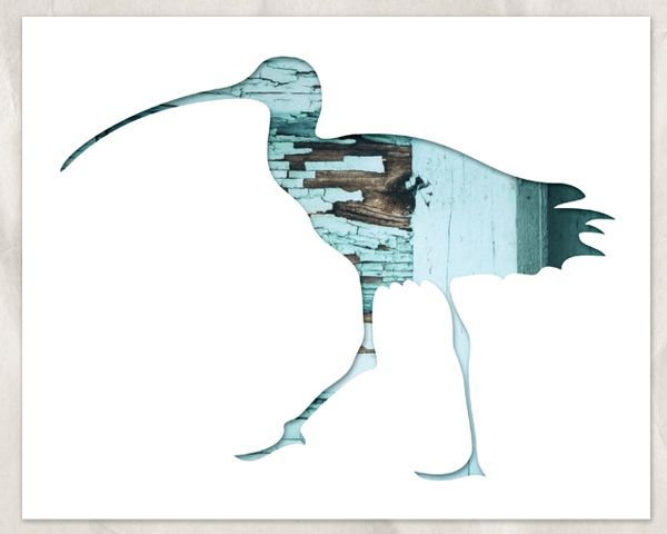 Handmade Bird Inspired Framed Art |