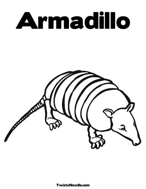 Armadillo Coloring Page From Twistynoodle Com With Images