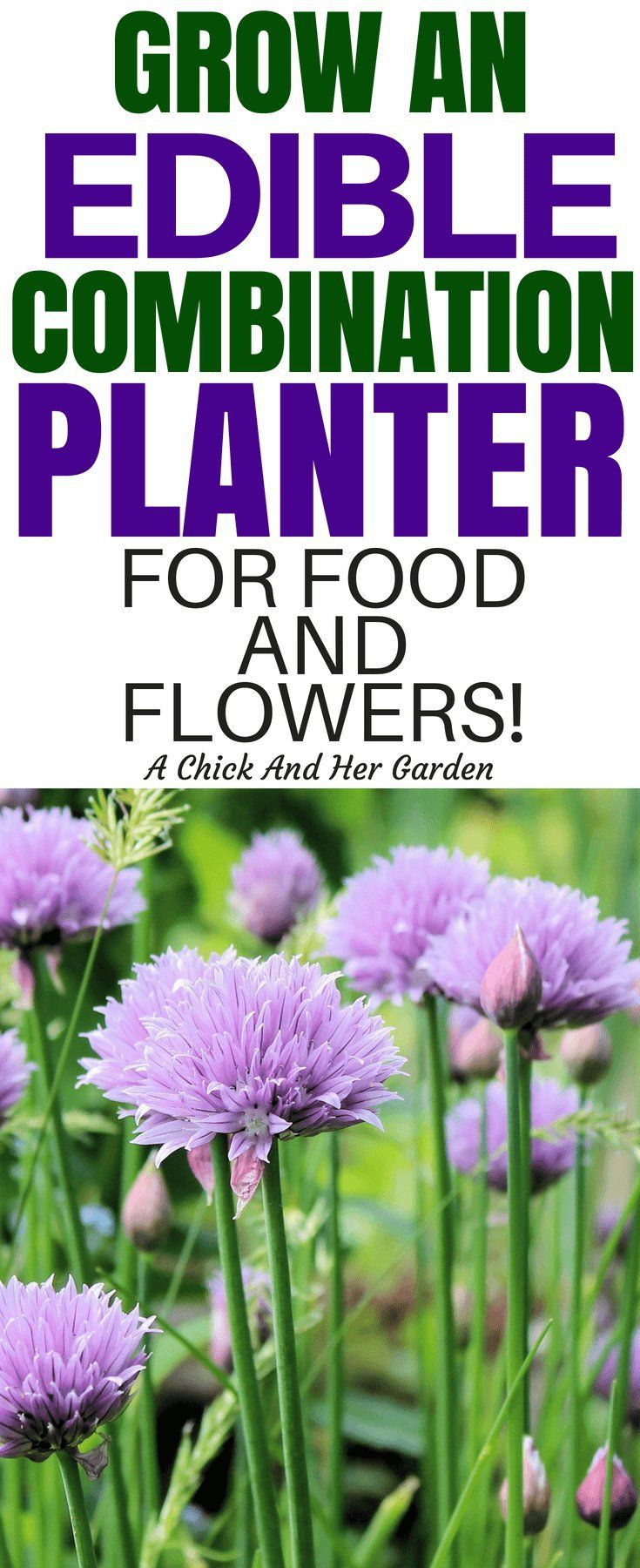Mix And Match You Flowers With Produce And Make Edible Landscaping