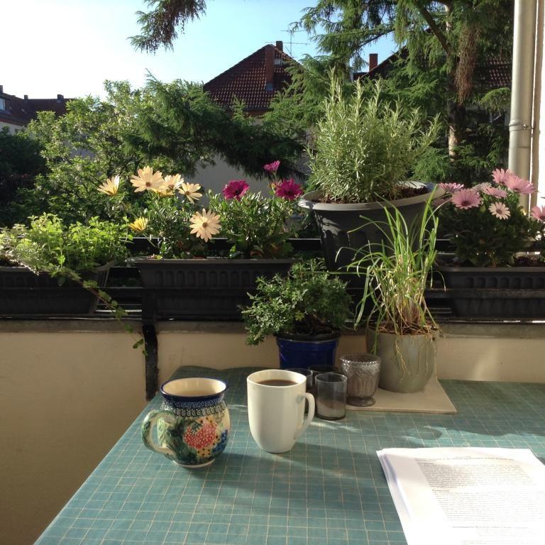Idyllischer Und Entspannter Start In Den Tag Kaffee Mit Milch Auf Dem Balkon Zwischen Wunderschonen Blumen Balkon Einer Ber Pflanzen Gartenarbeit Bepflanzung