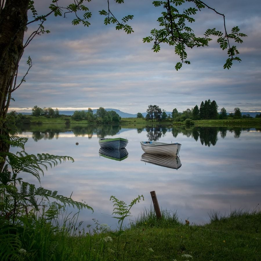Summer Stillness... Loch Rusky