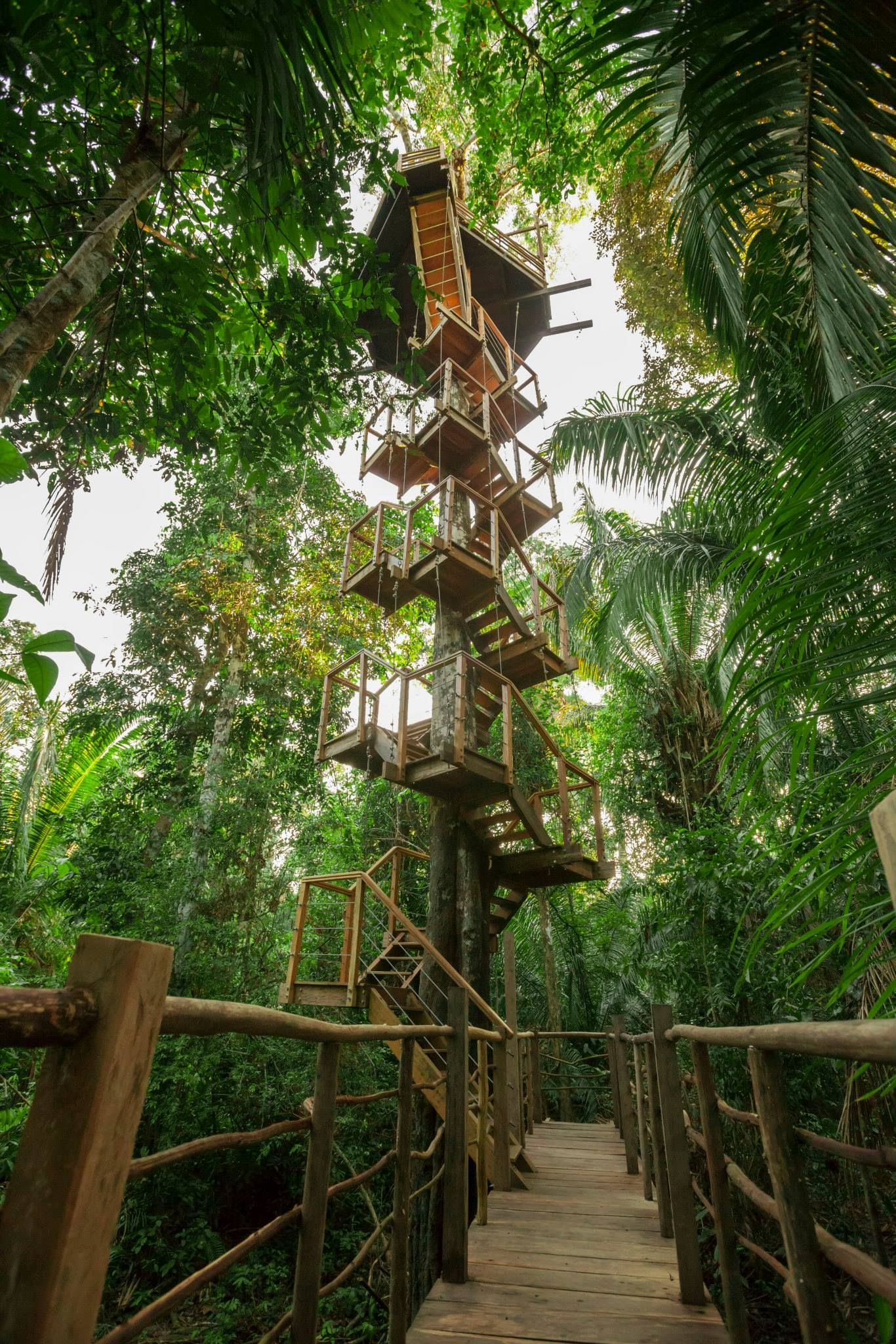 8 Romantic Reasons Why The Amazon Is The Best Honeymoon