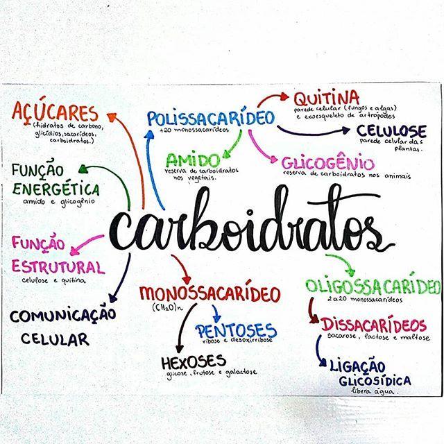 """Tai on Instagram: """"🔹◾ Resumo de biologia sobre carboidratos. . . . . . . . . 🔹◾Sigo estudando bioquímica ainda, pois essa parte da matéria parece não ter fim…"""""""
