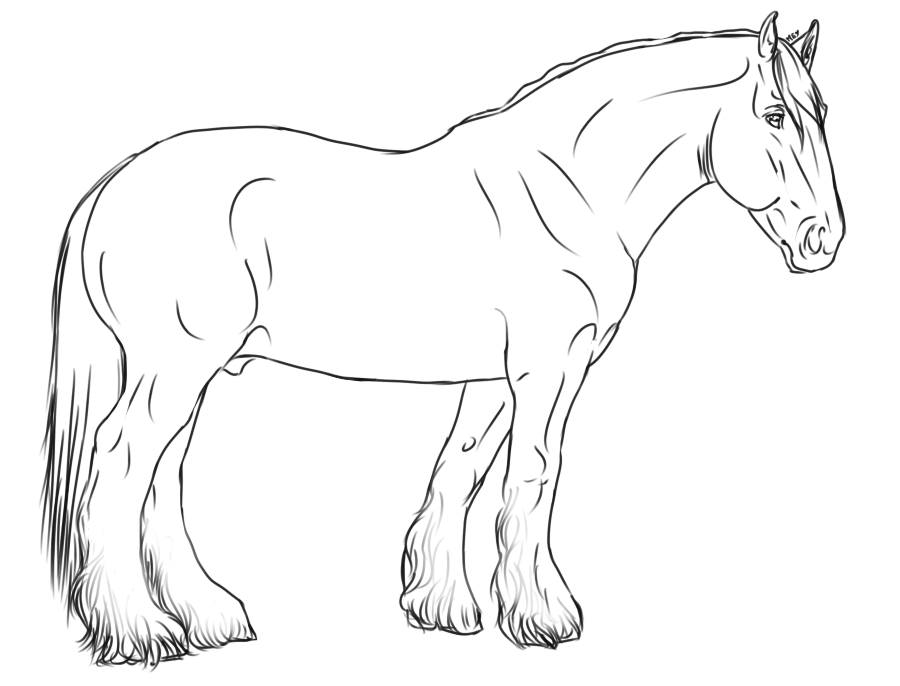 Horse Lineart Horse Coloring Pages Horse Illustration Horse Painting