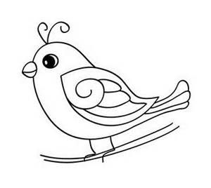 Baby Bird Coloring Pages Bing Images Bird Coloring Pages Bird