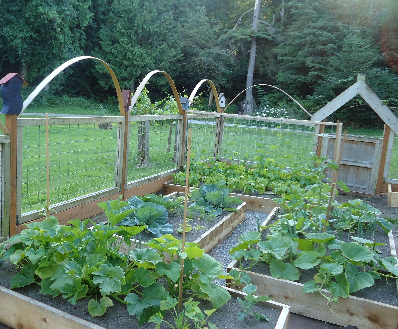 Raised Cedar Bed Garden Garden Plans Pinterest 640 x 480