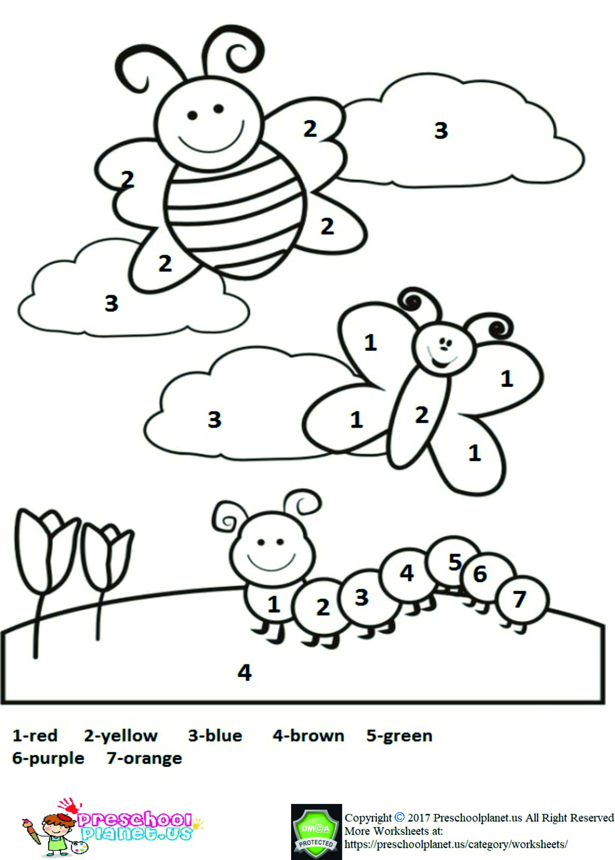 Life Of Cycle Butterfly Worksheet In
