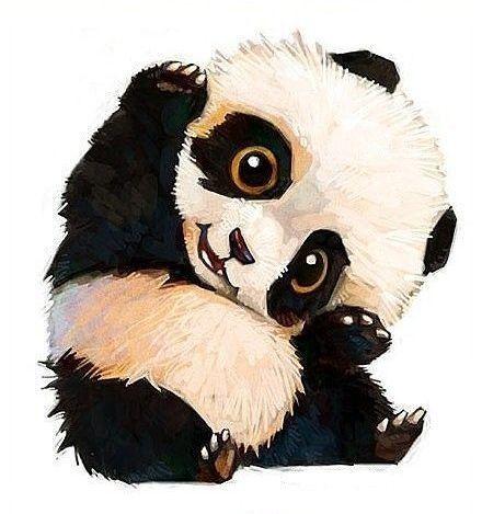 Bébé Panda Trop Chou Panda Dessin Dessins Mignons Et Art