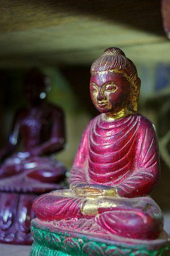❤família - Purple Buddha