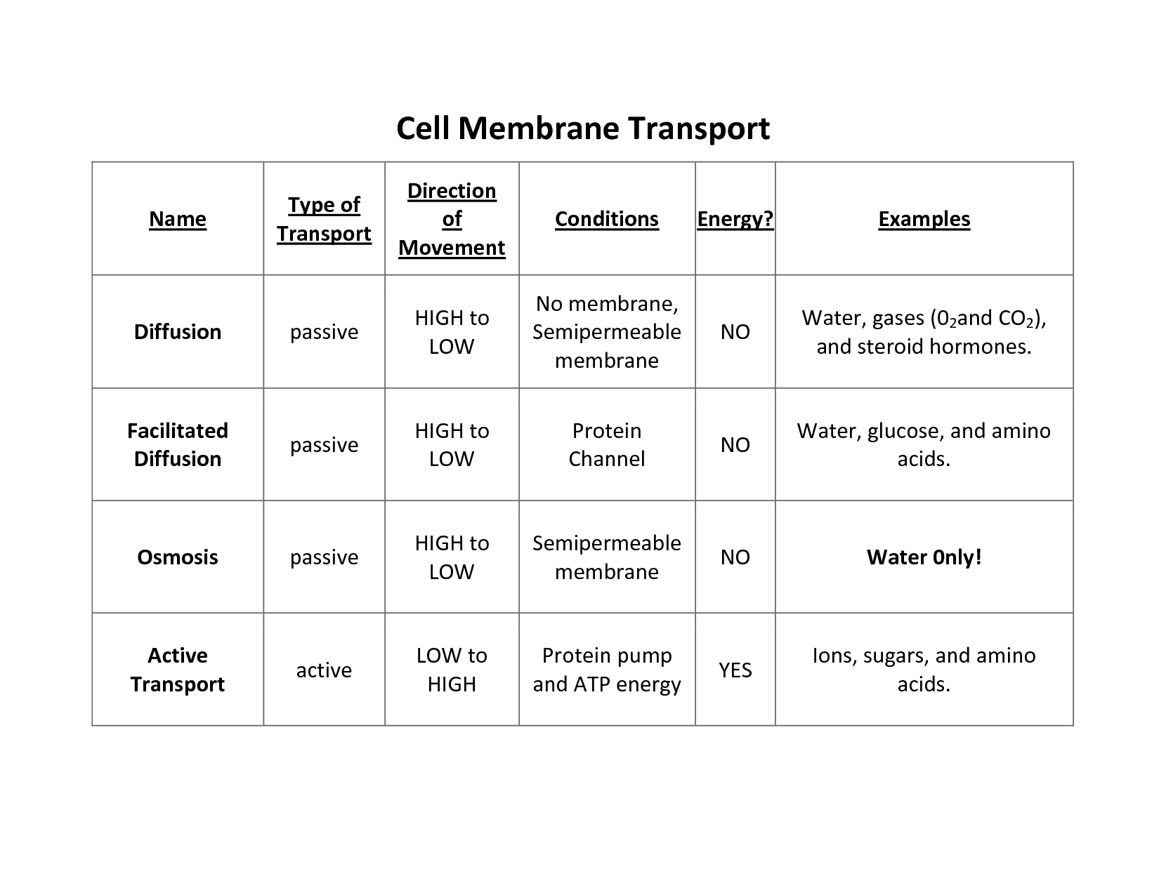 Cell Transport