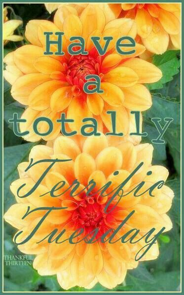 Have A Totally Terrific Tuesday. God Bless You.