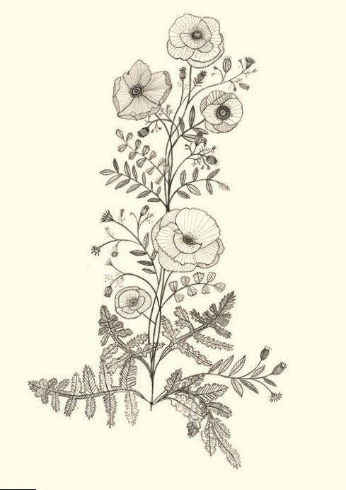 Tattoos Hot Tattoo Plant Tattoo Flower Drawing Design Flower Drawing