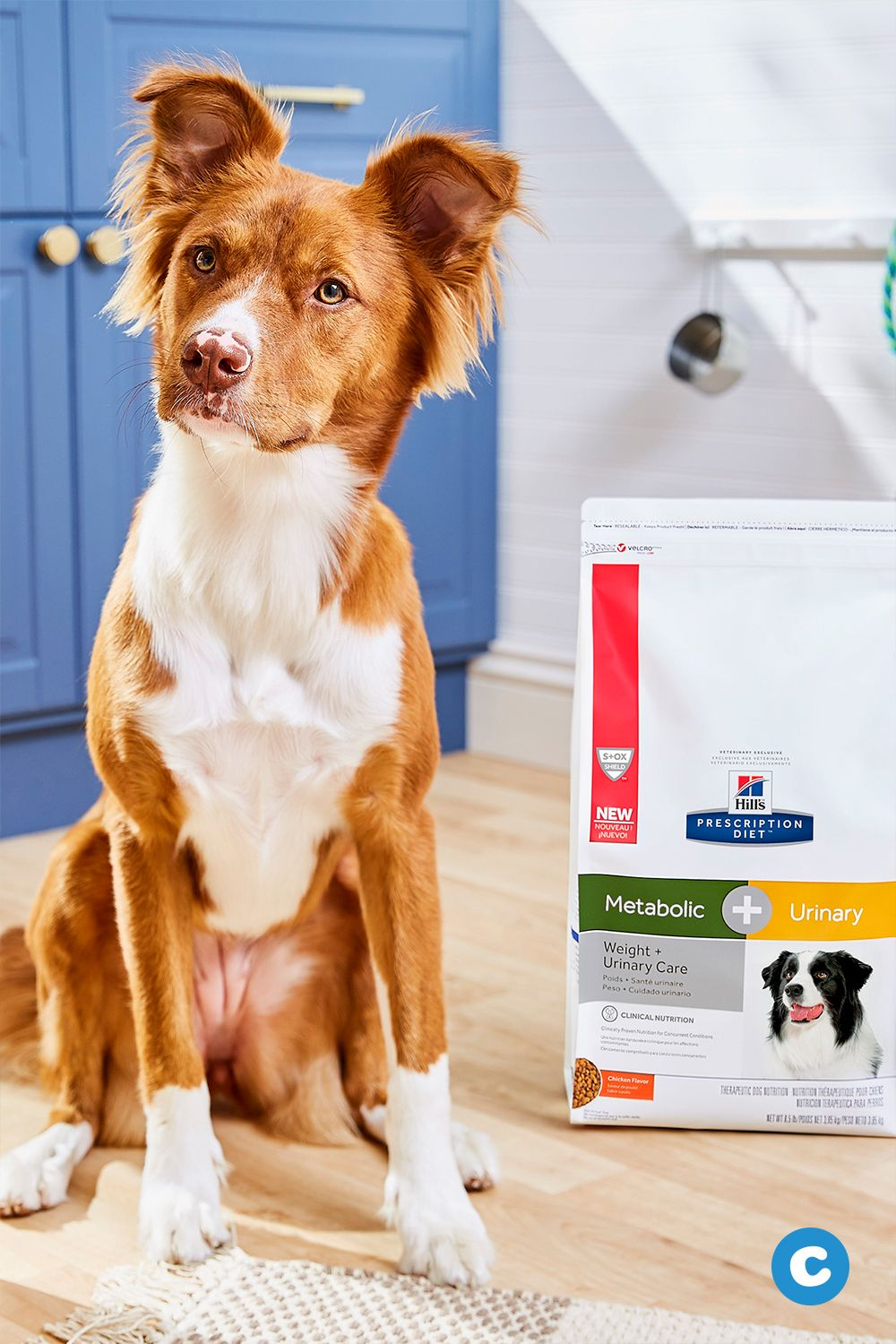 Hill S Prescription Diet C D Multicare Metabolic Urinary Weight Care Chicken Flavor Dry Dog Food 8 5 Lb Bag Chewy Com Dry Dog Food Diet Dog Food Chicken Flavors