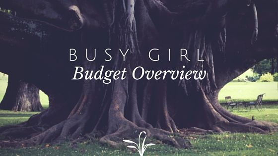 Busy Girl on a Budget Overview