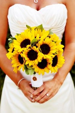 sunflowers are a must