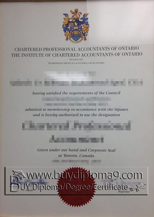 Chartered Professional Accountants of Ontario certificate, Buy