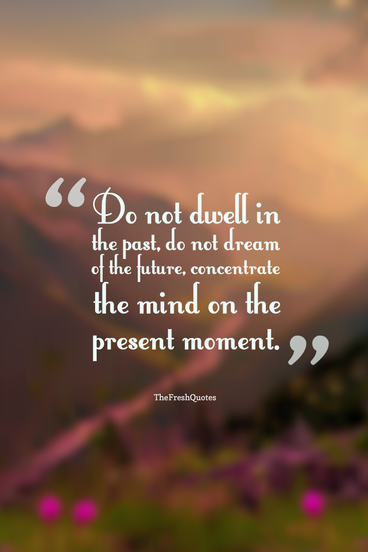 Top 10 Life Quotes Do Not Dwell In The Past Do Not Dream Of The Future Concentrate The Mind On The Present Moment Life Quotes Quotes Picture Quotes