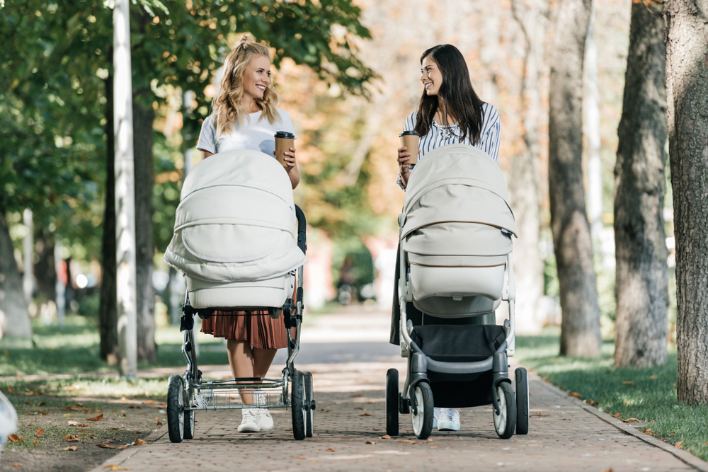 Looking for the best stroller for your family? Check out
