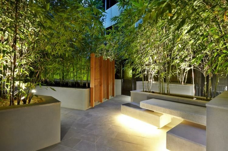 Ca a de bamb para jardines modernos deco plantas for Jardines de patios modernos