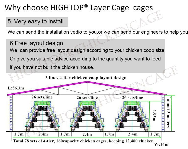 Pin by HIGHTOP CHICKEN CAGE on Layer Cage Chicken cages