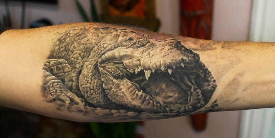 alligator tattoos   Posted in Alligator Tattoos   No ...