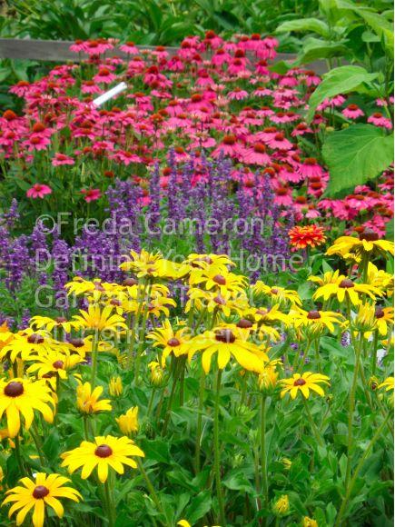 Pin By Karin Nielsen On Jardin Garden Inspiration Plants Perennials