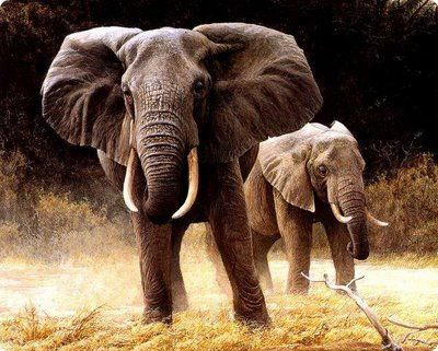 Painting of African elephants
