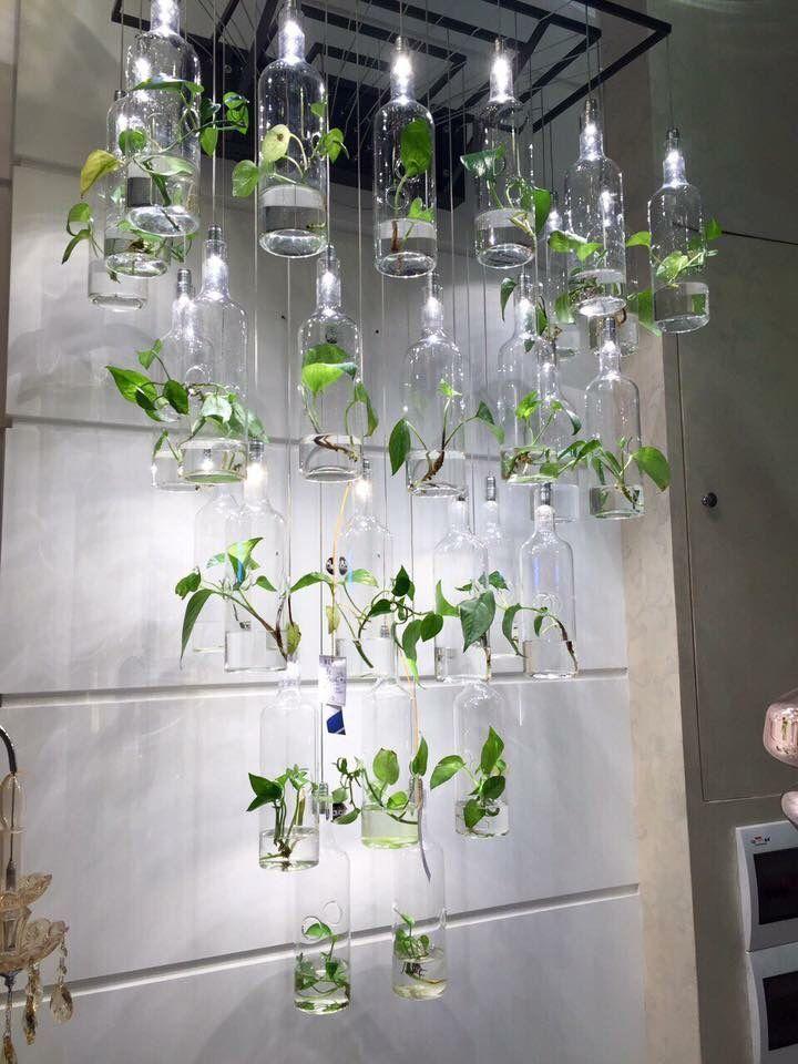 Pin On Indoors: House Plants Decor, Indoor Herb Garden, Plant Decor