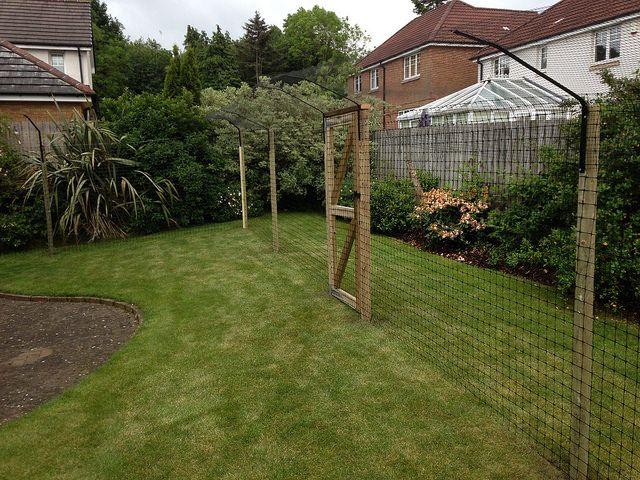 Protectapuss Enclosures For Gardens Without Existing Fencing Katzengarten Garten Katzen