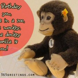 Funny birthday messages for sister birthday pinterest funny funny birthday messages for sister m4hsunfo Images