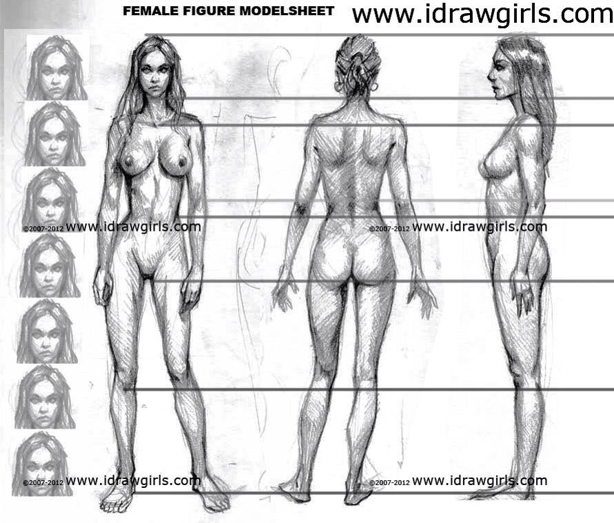 Female body construction | Drawings | Pinterest | Anatomía, Dibujo ...