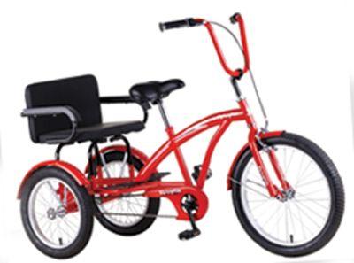 Buddy Family Tricycle Bike Bug Car Free Travel Pinterest