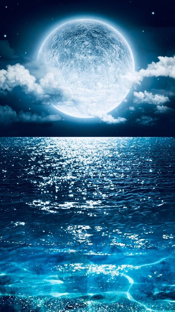 Pin by Nevaeh In Nirvana on Blue Hue Nature photography