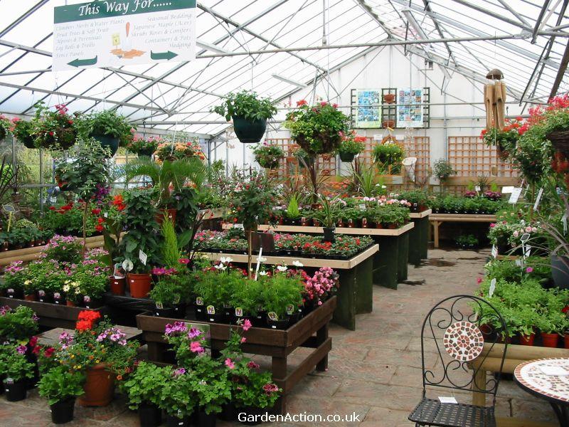 Garden Design Nursery plant nursery centers | littlehurst nurseries garden centre