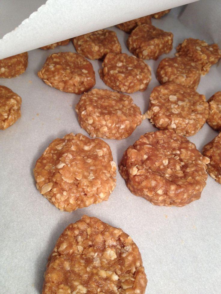No Bake Peanut Butter Oat Dog Treats Recipe Dog Biscuit