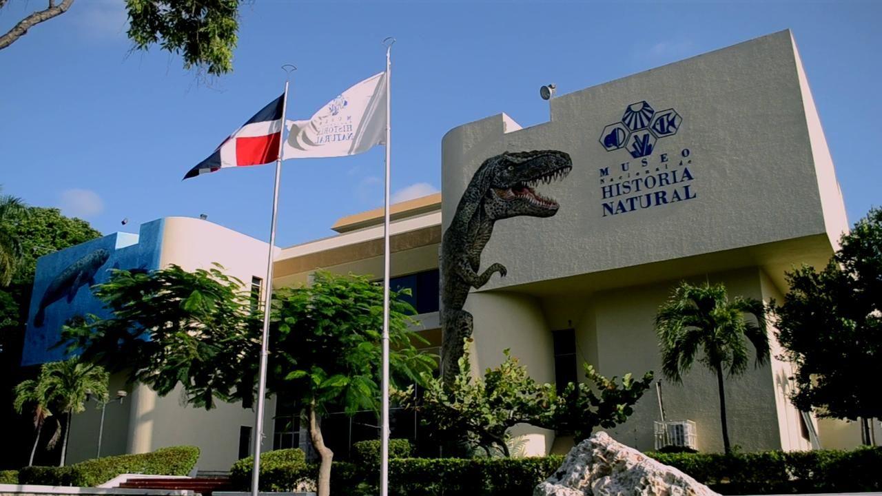 Museo Nacional De Historia Natural Natural History Outdoor Decor Santo Domingo