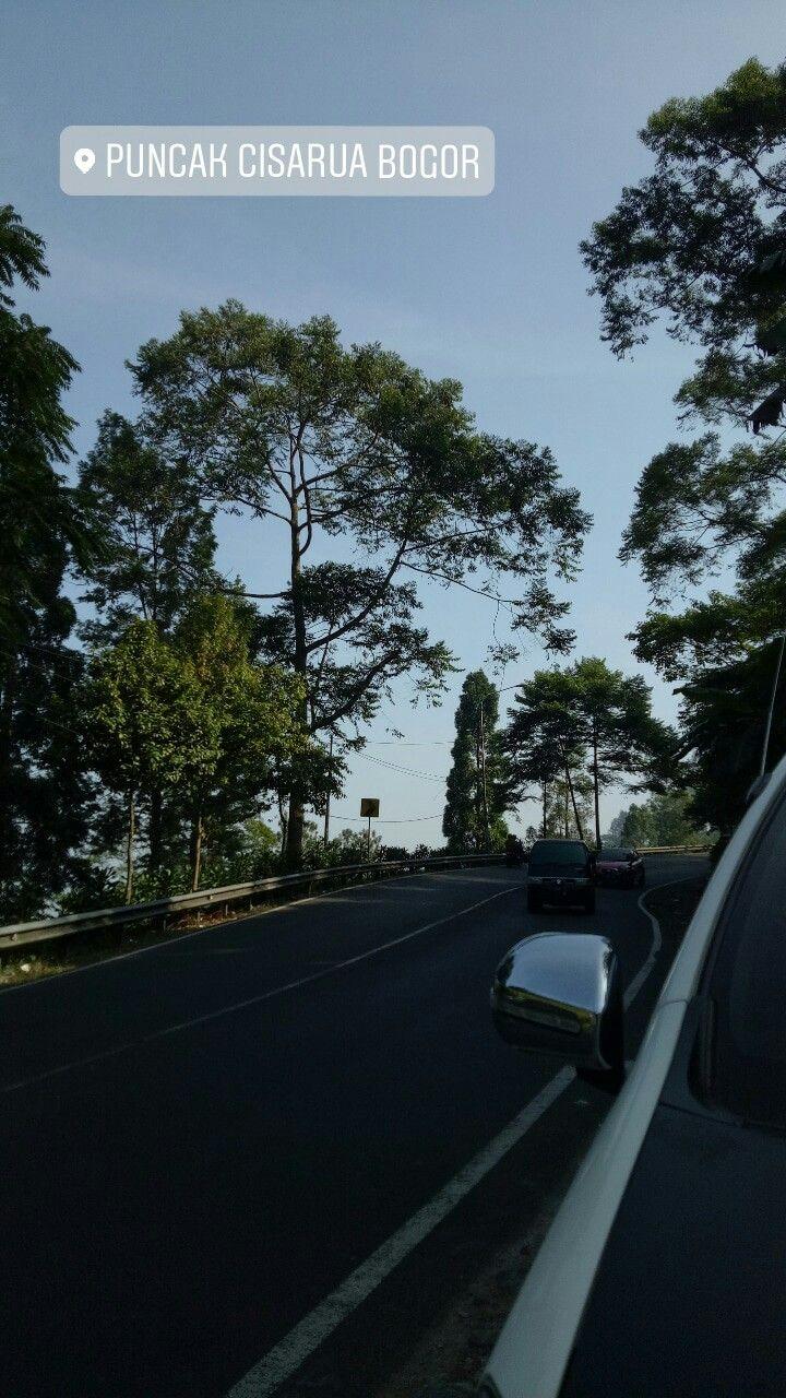 Puncak Bogor Fotografi Perjalanan Fotografi Perjalanan Pertualangan