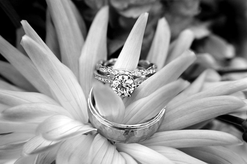 Our rings. #tacori #ritani #artcarved