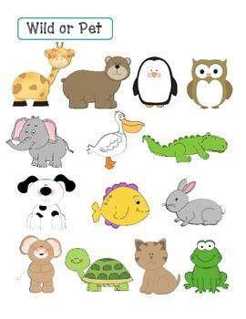 Wild Animal Or Pet File Folder Game And Worksheet Pets Preschool Animals Wild Animal Worksheets
