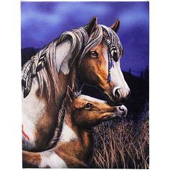 "Apache Canvas Plaque by Lisa Parker 10"" x 7"""