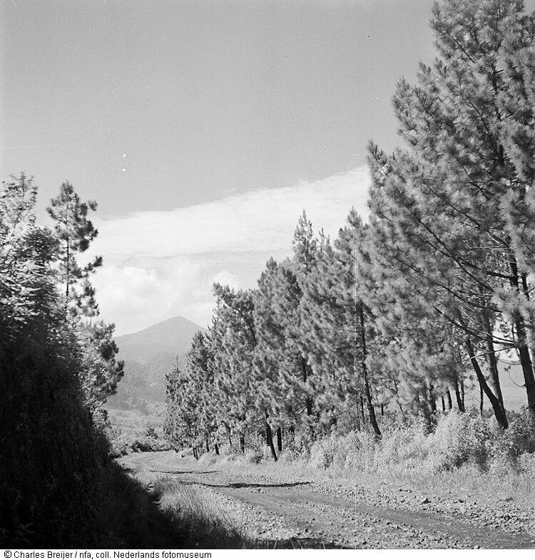 Landweg in de omgeving van Bandung, Indonesië (1948'49