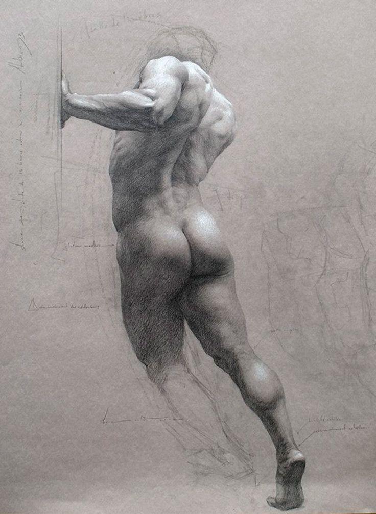 male human body Nude