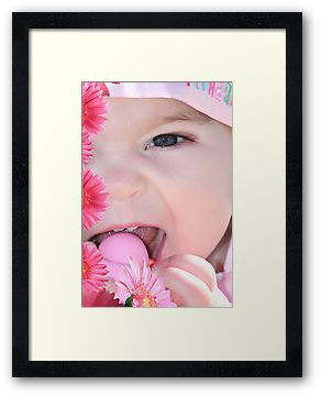 Photography by Sweetgrass showing in this pin some of the images we have taken framed and ready to hang when ordered. Images reduced in size and quality for posting on pinterest.