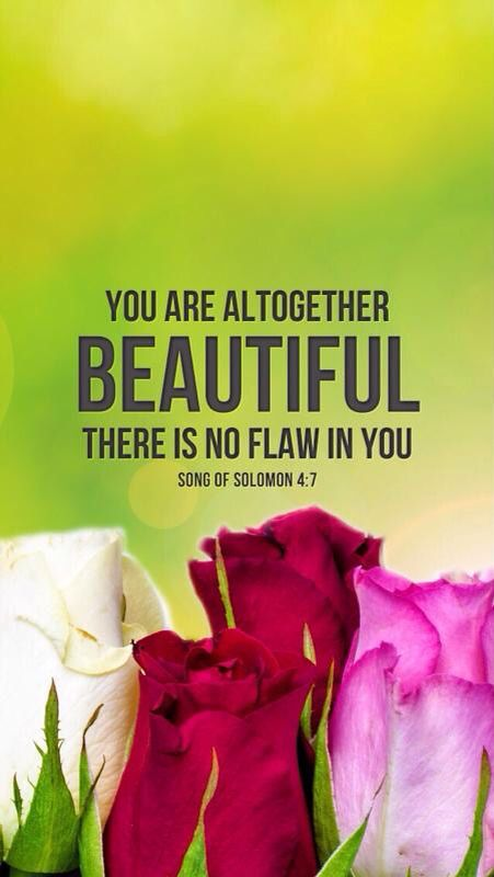 Song of Solomon 4:7 This doesn't diminish for me, MVW you