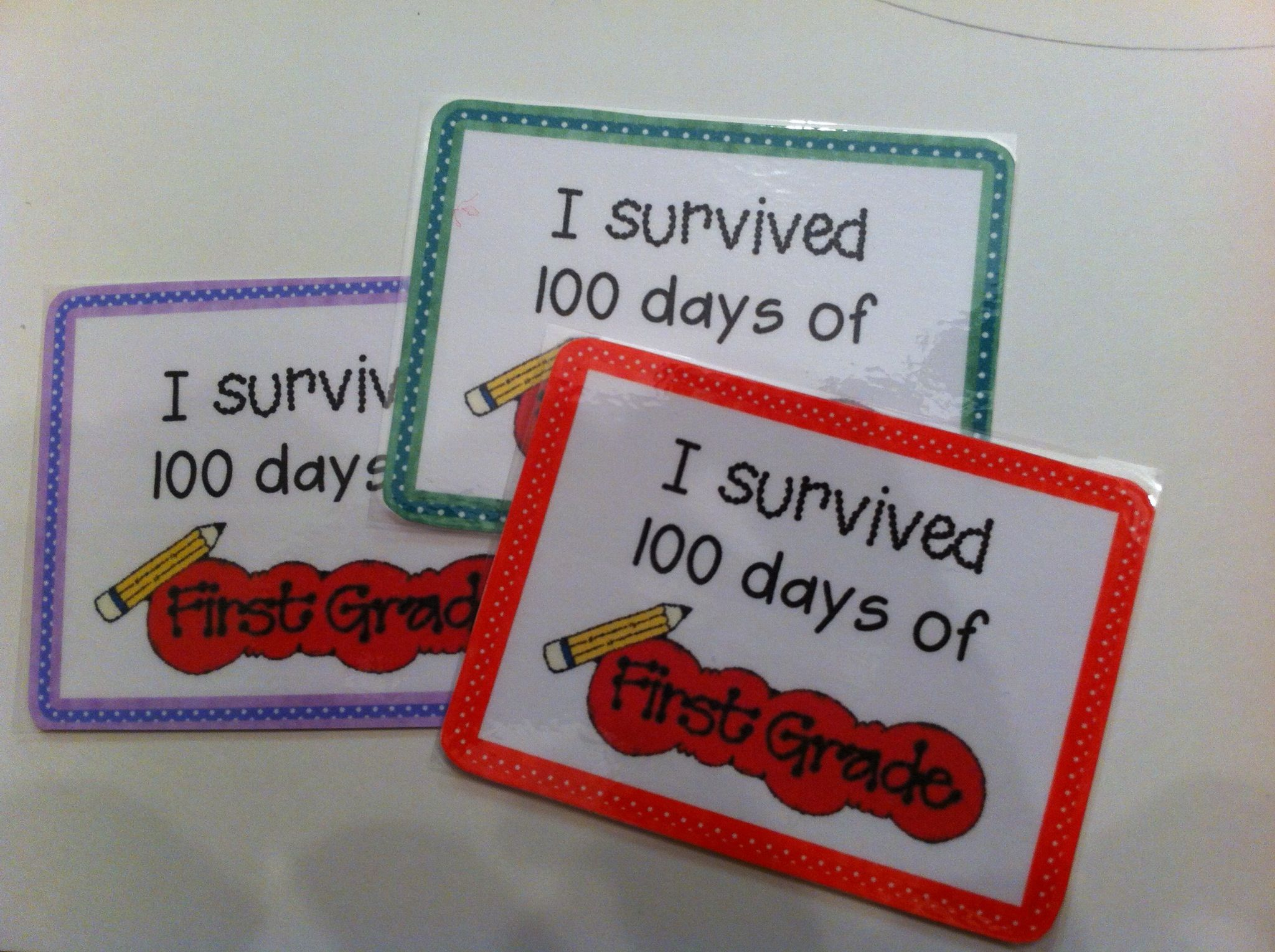 100th day pins