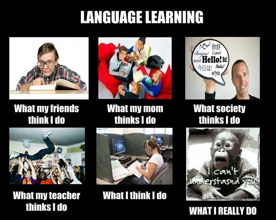 Image result for meme learning new language