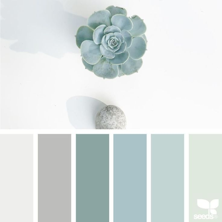 Purple And Grey Color Schemes: Succulent Color Palette. White, Grey , Taupe, Green, Teal