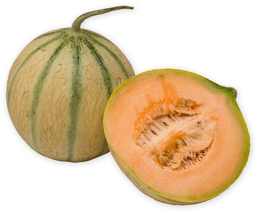 die besten 25 charentais melone ideen auf pinterest wassermelone melone obst oder gem se und. Black Bedroom Furniture Sets. Home Design Ideas