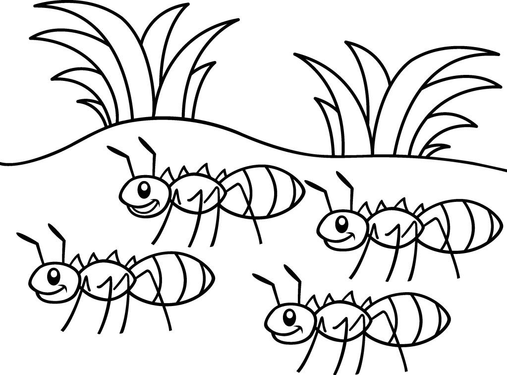 Ant Coloring Pages Insect Coloring Pages Coloring Pages