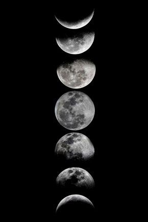 Phases of the Moon Art Print by eftypography